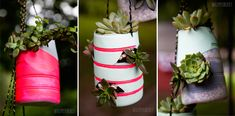 DIY succulent containers from coffee creamer bottles Hanging Succulents, Succulents In Containers, Hanging Planters, Succulents Garden, Plastic Containers, Diy Upcycled Decor, Repurposed Items, Creamer Bottles, Diy Hanging
