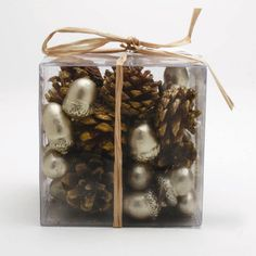 Holiday Celebration Acorn and Pinecone Set by Tag