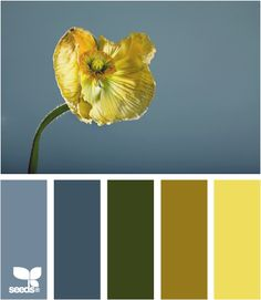 Love love this site! So inspirational with paint schemes. Now just to narrow some down...