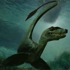 Tahoe tessie- North American cryptid: a large serpent like creature that had been seen in Lake Tahoe in Nevada and California. It is green with a 50-80ft long body that swims side to side(others say it swims up and down like a mammal). Some think it is a Dino but that cant be true because the lake was formed after the last ice age. It is thought to be sturgeon, or a new type of freshwater eel.