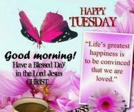 Happy Tuesday, Good Morning