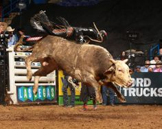 Markus Mariluch was poised to win the event but his efforts were thwarted by Apollo Stripes. Photo by Andy Watson / BullStockMedia.com. #bull