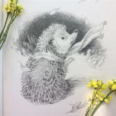 🌲 Illustration by 🌲 ********************* Hedgehog Illustration, Illustration Artists, Blown Away, Winter Art, Cool Art, Fun Art, Beautiful Day, Bird, Pets