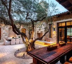Olive tree in middle of patio!