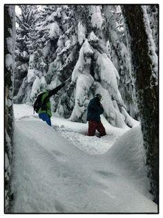 #pathfinder — #sten #smola #levi #luggen  #pow #forest Outdoor, Outdoors, Outdoor Living, Garden