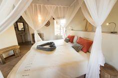 Home - Sefapane Lodge & Safaris