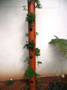 Tight for outdoor space? This vertical gutter garden is your answer!