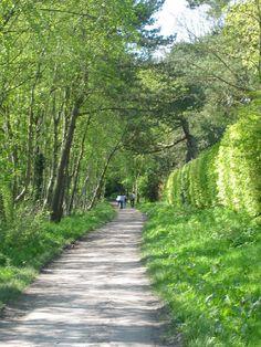 Old Deeside railway line walk, Pitfodels - Aberdeen, Scotland