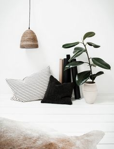 Simple pillows and plants