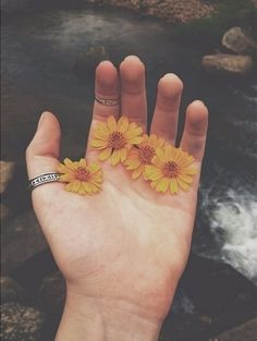 photography summer hippie hipster vintage indie Grunge old flowers retro instagram floral polaroid accessories rings lomography folk instalike