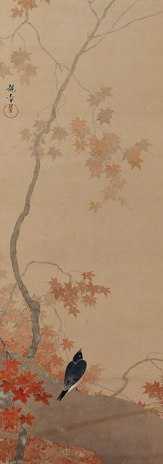 Bird in maple tree. Japanese hanging scroll painting.