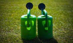 Water Saving Tips for Environmentally-Responsible Gardening