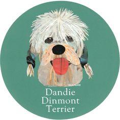035 | Dandie DInmont Terrier on Behance