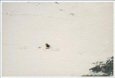 KENIA NÁREZ Impresión sobre papel de algodón, 2015