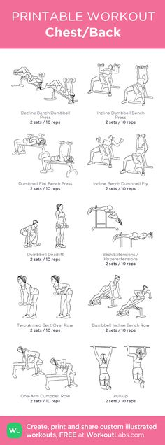 Chest/Back · WorkoutLabs Fit - Chest/Back – Heavy lifting workout for home Chest And Back Workout, Back Workout At Home, Chest Workout Women, Back Workout Women, Chest And Tricep Workout, Triceps Workout, Weight Lifting Workouts, Gym Workouts, At Home Workouts