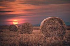 Sunset in field. by KonstantinosEleftheriadis field sunset nature Sunset in field. How To Wake Up Early, Photos Of The Week, Man Photo, Modern Living, Wonderful Places, Landscape Photography, Travel Photography, Travel Photos, Places To See