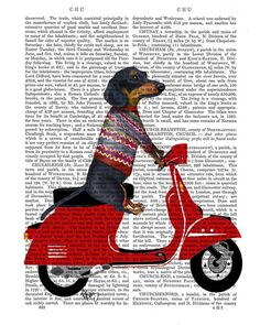 dachshund on moped, antiquarian book print by fabfunky art prints | notonthehighstreet.com