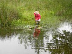 Waterbeestjes zoeken bij de Wyldemerk. Hét libellenreservaat bij bos Elfbergen in Oudemirdum.