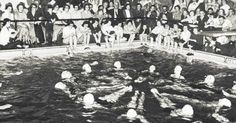 The Dolphins, a synchronized swimming group who presented an annual water show for students and the public into the 1960s.  [Christian College]