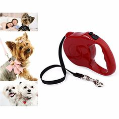 5m Retractable Pet Leash Lead Onehanded Lock Training Lead Puppy Walking nylon Leash Adjustable Dog Collar for Dogs Cats ** You can get additional details at the image link.
