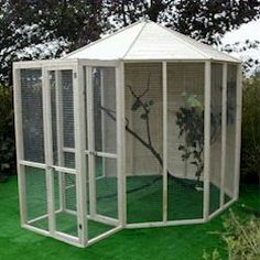 indoor bird aviary  | Outdoor Aviary - How to Build a Gouldian Finch Aviary- When I move Daniel will be making me this~