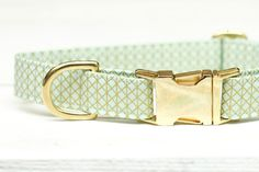 Mint and Gold Dog Collar, Metallic Gold, Female Pet Collar with Metal Buckle  Ive loved this print since I found it... in fact I thought it was so