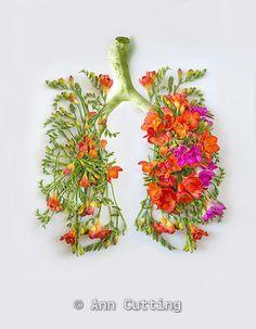 lungs flowers - Google Search Lung Cancer Awareness, Medical Art, Digital Art Tutorial, Pretty Roses, Little Flowers, Art Portfolio, Lunges, Love Art, Tatoos