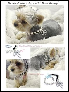 Dibalulu Pet Couture Dog Accessories – Pearl Beauty Dog Necklace – S « DogSiteWorld.com - DogSiteWorld-Store