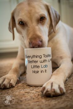 Labrador Coffee Mug – Lab Hair In It | It's a Lab Thing