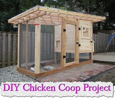 DIY Chicken Coop Project