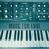 nice DANCE & DJ - Album - $2.99 -  Moog For Love