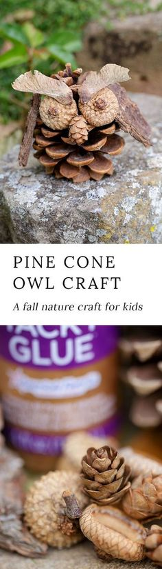 Fall is the perfect season for nature crafting! Kids will love beingcreative with acorns, pinecones, twigs, bark, and seeds to create one-of-a-kind Pinecone Owls.
