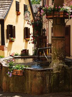 Hunawihr ~ Alsace, this reminds me of the setting in Pinocchio!