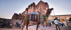 Mehrangarh Fort, Rajasthan #travel #India