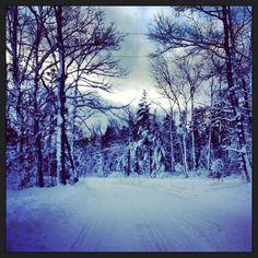 Snowy up north Michigan