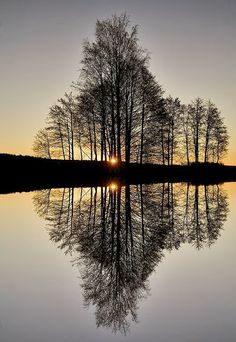 20 Amazing Reflections on Water