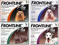 I'm learning all about Frontline at @Influenster! @frontlinepets