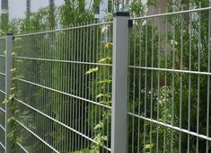 Térelválasztó kerítés megoldások Las Vegas Homes, Wire Fence, Wire Mesh, Twins, Outdoor Structures, Green, Products, Gardens, Chicken Wire