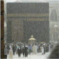 When it rains in Masjid-al-Haram, Makkah. Masjid Al Haram, Mecca Madinah, Mecca Masjid, La Ilaha Illallah, Mekkah, Saints, Les Religions, Beautiful Mosques, Islam Religion