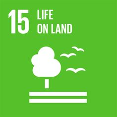 In September 193 world leaders agreed to 17 Global Goals for Sustainable Development. If these Goals are completed, it would mean an end to extreme poverty, inequality and climate change by Un Sustainable Development Goals, Sustainable Management, Un Global Goals, Population Mondiale, United Nations General Assembly, About Climate Change, Sustainability, Knowledge, Private Sector