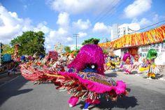 pacotes carnaval recife 2014 olinda