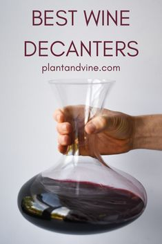 Looking for wine decanter ideas? This wine decanter guide covers all the basics of decanting wine and has some suggestions for decanters no matter what type of wine you drink! Perfect for dressing up your home. Check out Plant & Vine for more wine pairing Best Wine Decanter, Wine Carafe, Fancy Drinks, Wine Drinks, Beverages, Chicken White Wine Sauce, Wine Party Appetizers, Vegan Wine, Wine Tasting Party