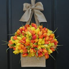 Red and yellow tulips in a basket for Spring
