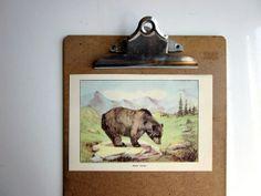Vintage Animal Painting Print Black Bear and by amykristineprints