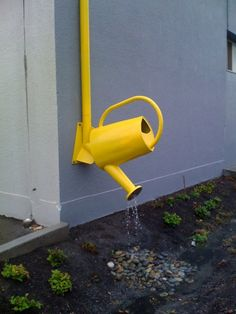 Downspout Whimsy