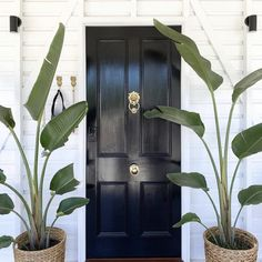 Your front door is one of the first things people will see when they arrive at your home. We love this black paintwork on a 4 panel cricket bat single entry door. Looking to update your entryway? Check out our full range. Front Door Entrance, Entry Doors, House Front, My House, Front Deck, Front Porch, Front Door Plants, Black Front Doors, Queenslander