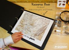 Dinosaur fossil book from Play To Learn Preschool