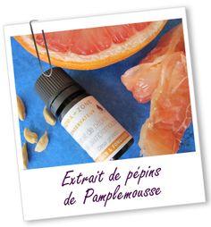 Conservateur Extrait de Pépins de Pamplemousse Aroma-Zone