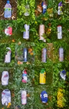 Litter Typology