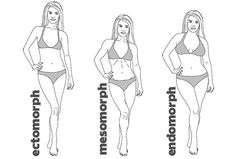 J. LO, Scarlett Johansson, Beyonce, Raquel Welsh and Elizabeth Taylor all have endomorph bodies. The endomorph body type is solid and generally soft. Endomorphs gain fat very easily. Endo's are usually of a shorter build with thick arms and legs. Muscles are strong, especially the upper legs. 3 Male & Female Body Types Explained — Tee Major